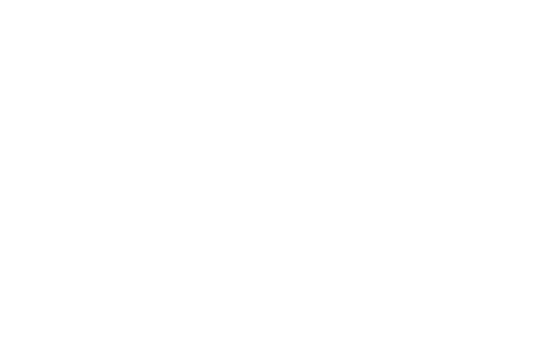 Wealthchild Logo